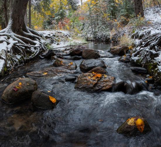A babbling stream at Pine Cree Regional Park, Saskatchewan.