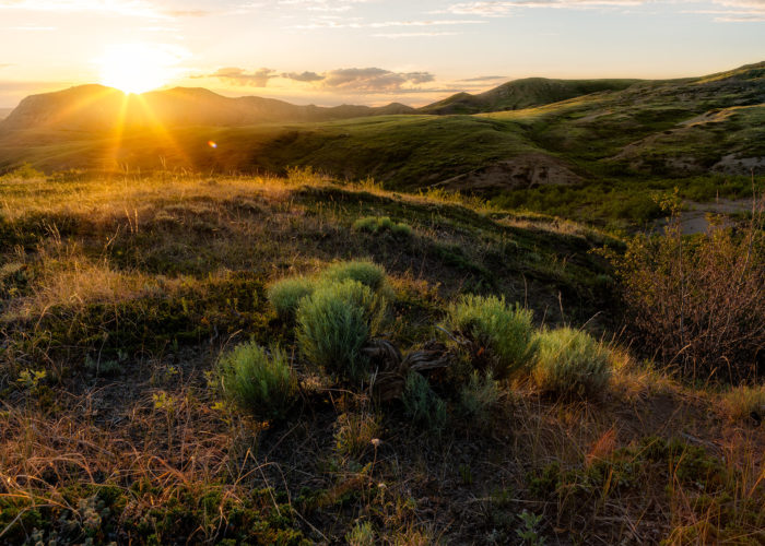 Landscape Photography of Eagle Butte at sunset with a sunstar in Grasslands National Park