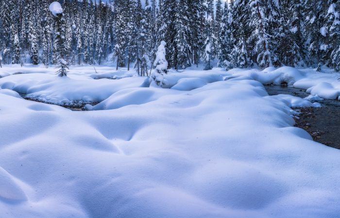 A panorama of the Canadian Rockies near Emerald Lake. Snow covered boulders and trees