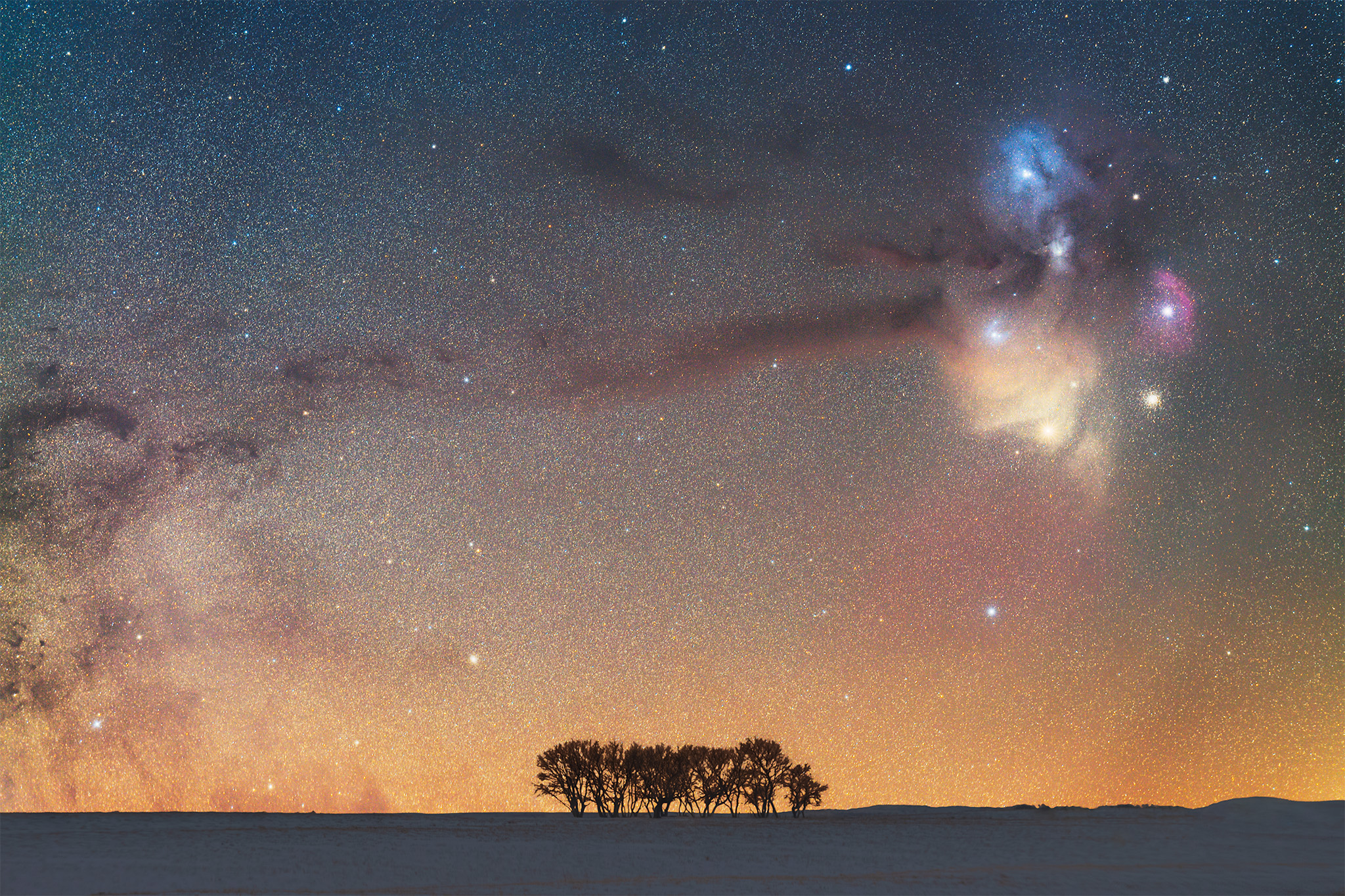 Night photography of the Rho Ophiuchi cloud complex rising over some Saskatchewan trees