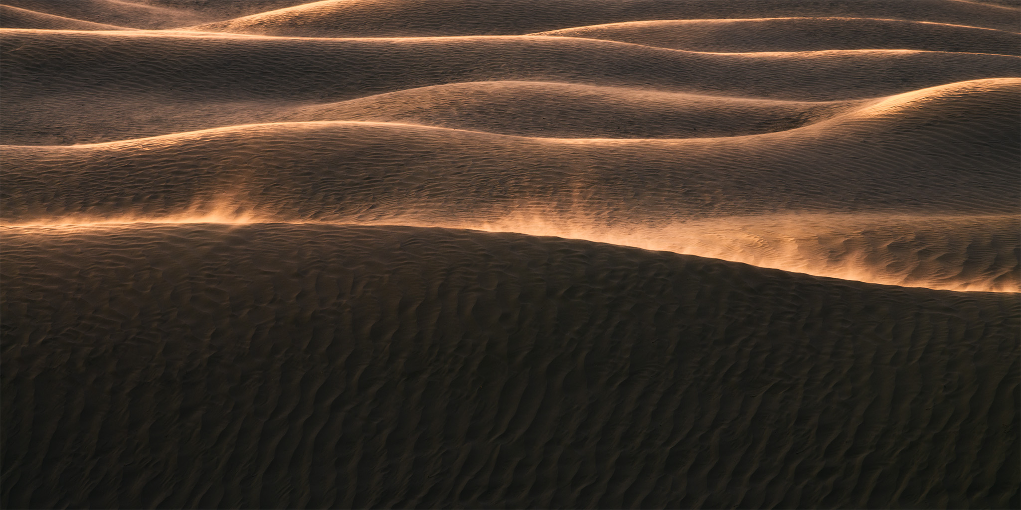 An intimate landscape photography of evening light hitting windy sand dunes at the Great Sandhills in Saskatchewan