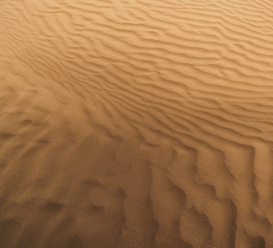 An abstract photograph of a sand dune in The Great Sandhills, Saskatchewan